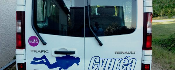 Le Bus (3)
